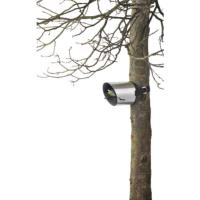 BLOMUS Borea Bird Feeder