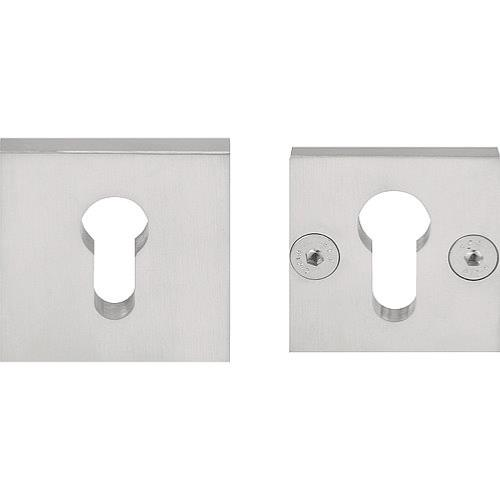 LSQVEIL-B solid stainless steel security escutcheon