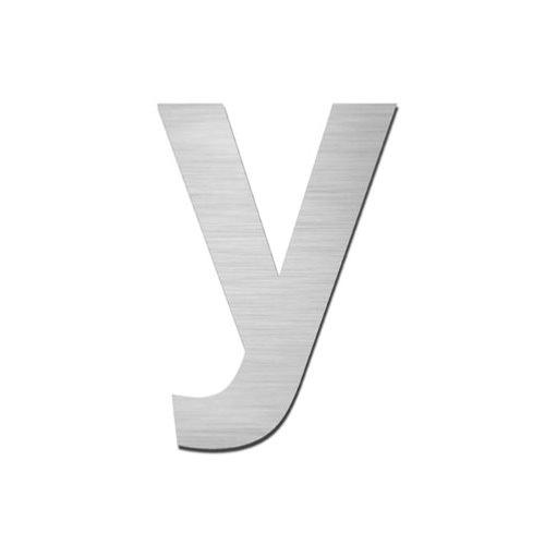 Brushed stainless steel lowercase letter - y
